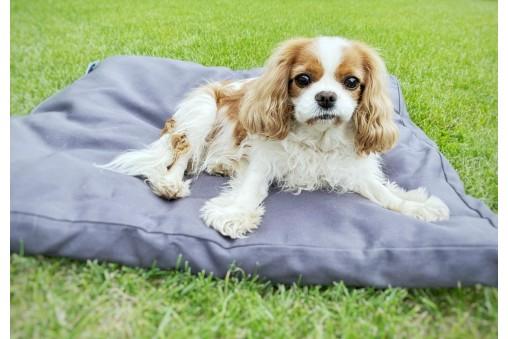 Miękkie legowisko bawełniane dla psa